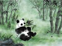 2020版熊猫纪念币多少钱一枚