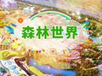 蘇州樂園森林世界游玩全攻略(時間+門票