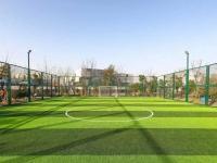 蘇州龍山體育公園運動場免費(預約指南+