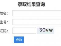 2020年深圳技術大學本科錄取結果查詢入
