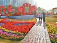 2020深圳宝安花市有哪些(地址在哪里+时