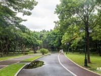 深圳中心公园在哪里(地址+公交地铁怎么