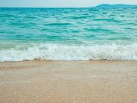 西涌沙滩要不要门票(价格多少钱)