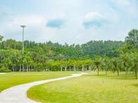 深圳适合跑步的公园盘点