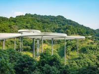 深圳大顶岭绿道及三桥端午节开放吗