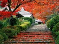长沙南郊公园赏红叶攻略
