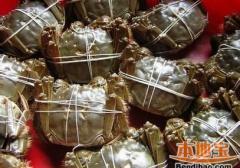 秋季如何选购螃蟹 秋天吃螃蟹好处多