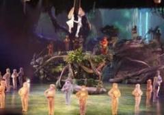 上海迪士尼女演员表演人猿泰山时从空中跌落 目前无大碍