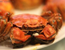 清蒸大闸蟹怎么做?清蒸大闸蟹的做法介绍