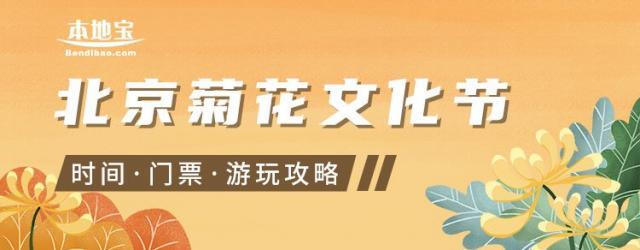 2020北京菊花节游玩指南(六大展区看不停)