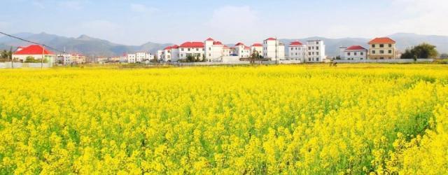 2021南昌春季赏花地图