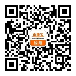 2019沈阳国庆中街商业城灯光秀时间
