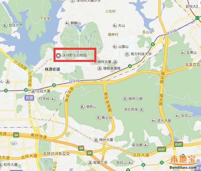 深圳动物园在哪里?