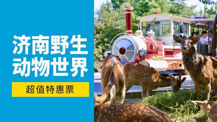 【济南野生动物世界】人与动物零距离自由和谐共处~