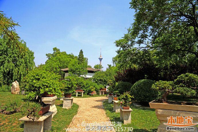 天津水上公园盆景园花展5月15日至22日开幕
