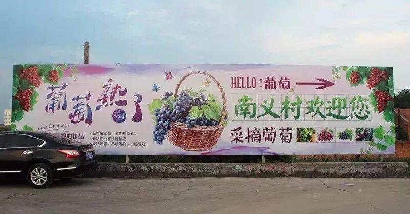 2018津南南义葡萄嘉年华(时间)