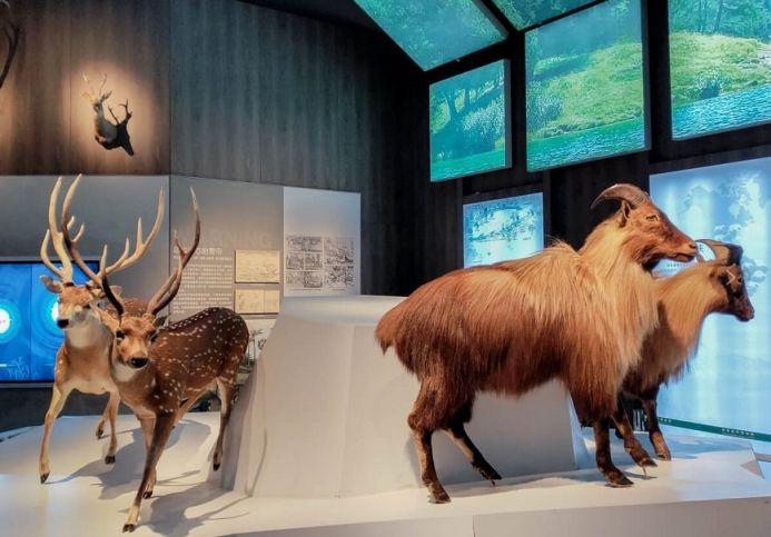 国家海洋博物馆有哪些常设展览