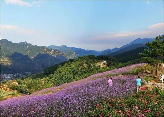 天津周边小众自驾一日游地点推荐地之南天丽景旅游景区