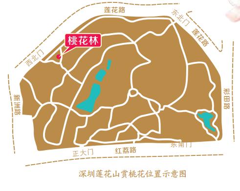 2016年春节玩转深圳公园全攻略