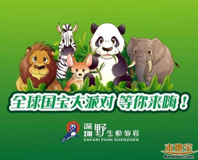 2016深圳野生动物园十一活动 最全国宝动物来开Party啦