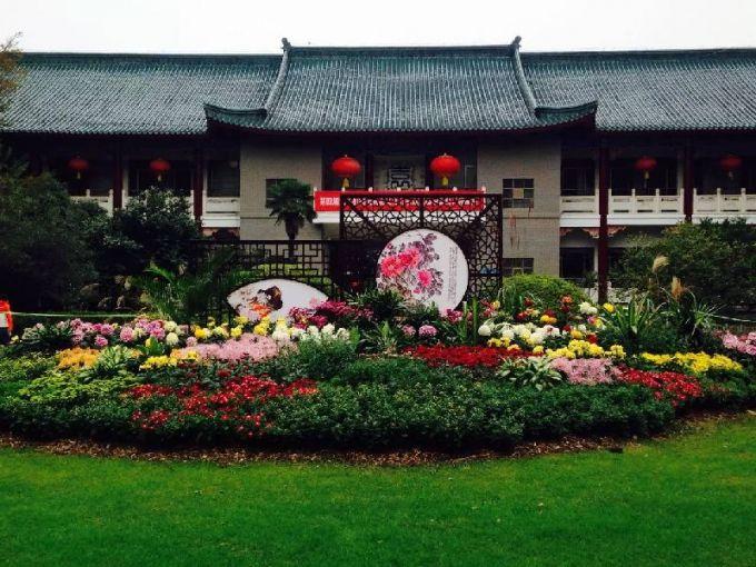 武汉植物园菊花展 武汉赏花秋游好去处