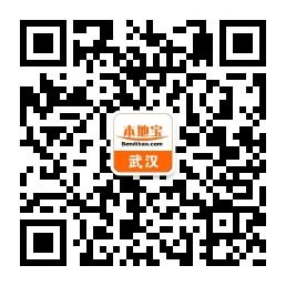 武汉vac电音节2019时间