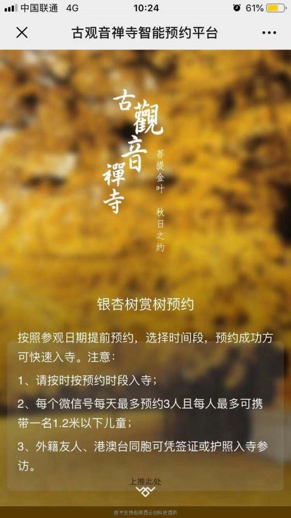 西安古观音禅寺银杏观赏网上预约2019年10月29日正式启动