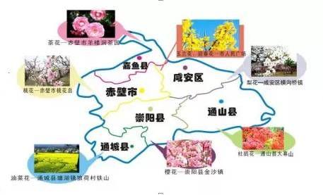 咸宁赏花地图 带你春季游遍咸宁