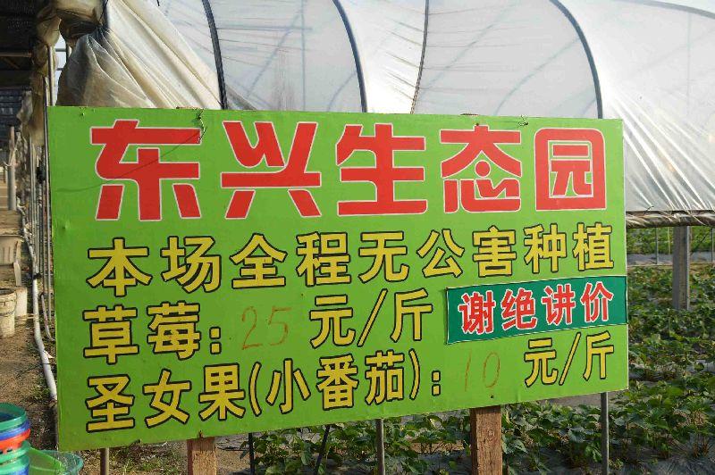 斗门镇东兴生态园