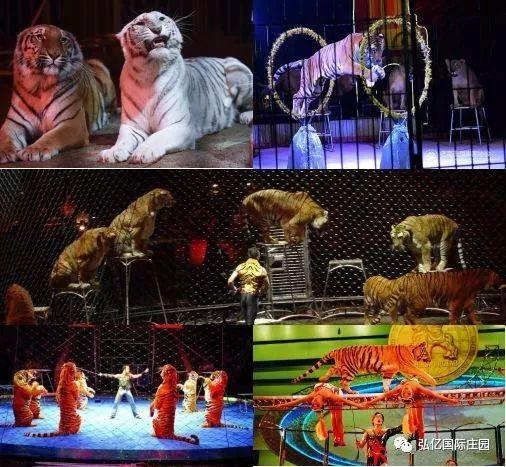 2018郑州弘亿国际庄园国庆节活动一览
